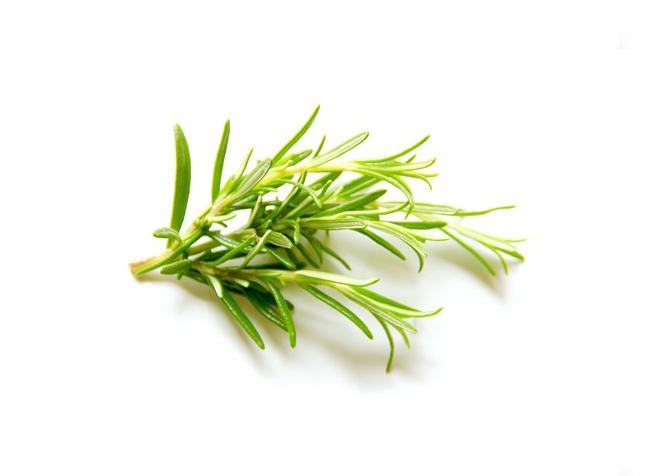 comprar hierbas aromática en Mallorca